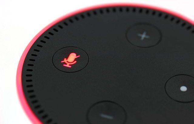 Google Home or Amazon Alexa